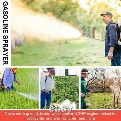 2 Stroke Gas Powered 6.5 Gallon Backpack Sprayer Gas Engine for Garden Spraying